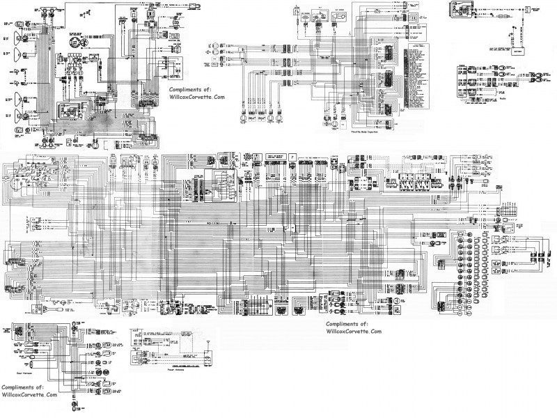 1982 Corvette Wiring Diagram (Tracer Schematic) [PDF