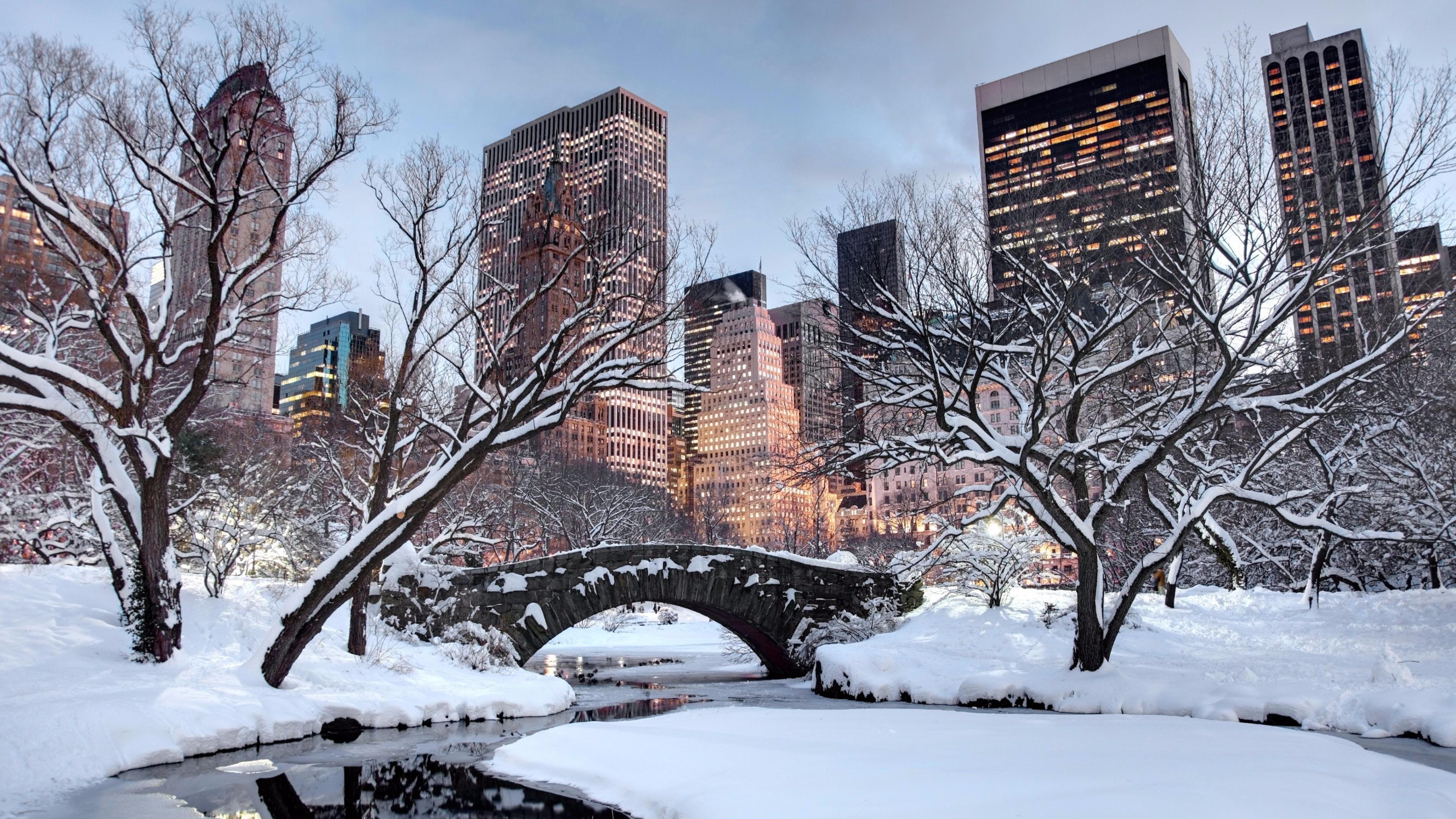 Snow Winter United States New York City Tree Sky Building Wallpaper New York Snow Visiting Nyc Winter Travel