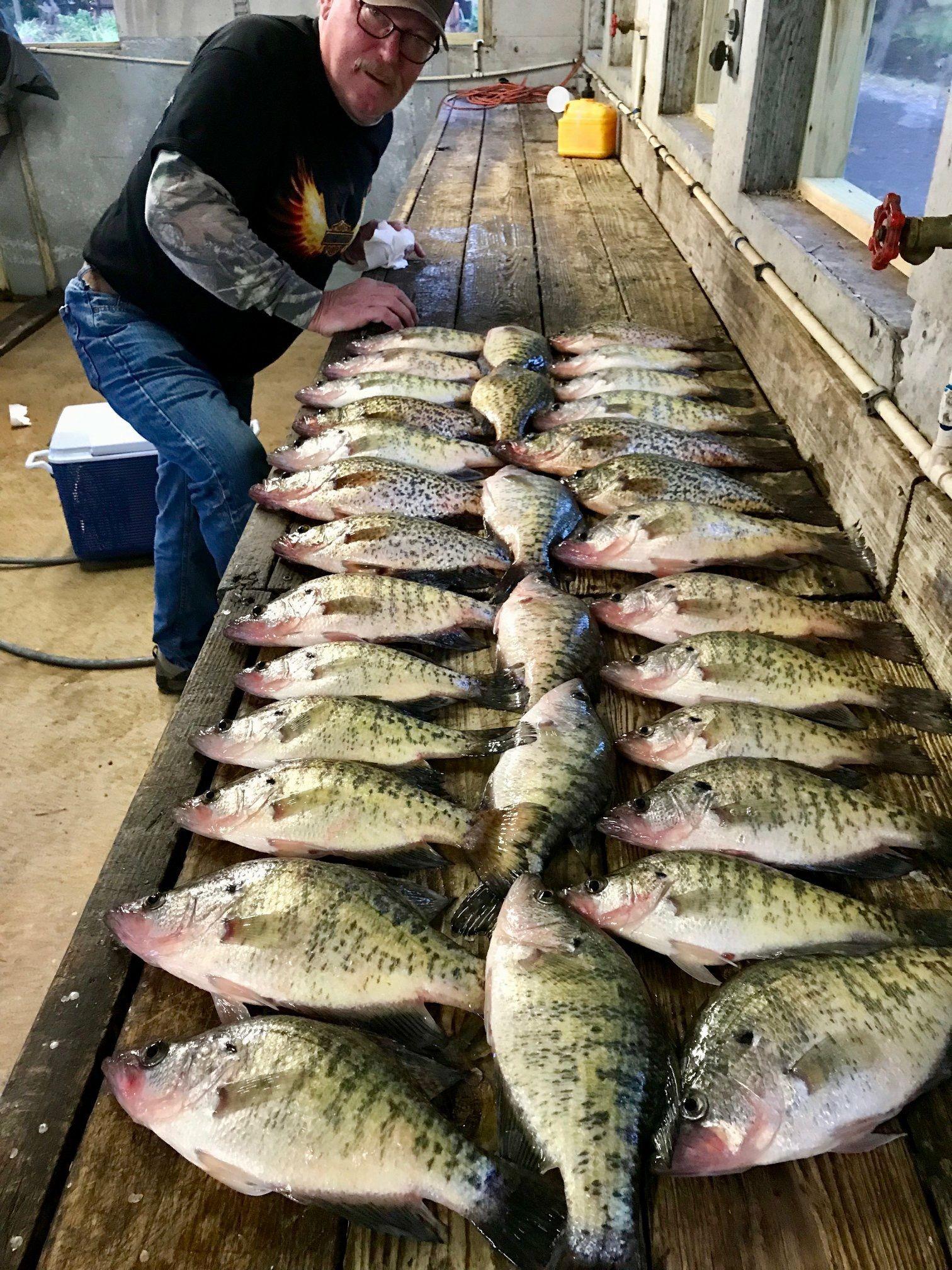 Pin by Blue Bank Resort on Reelfoot Lake Fishing @ Blue Bank