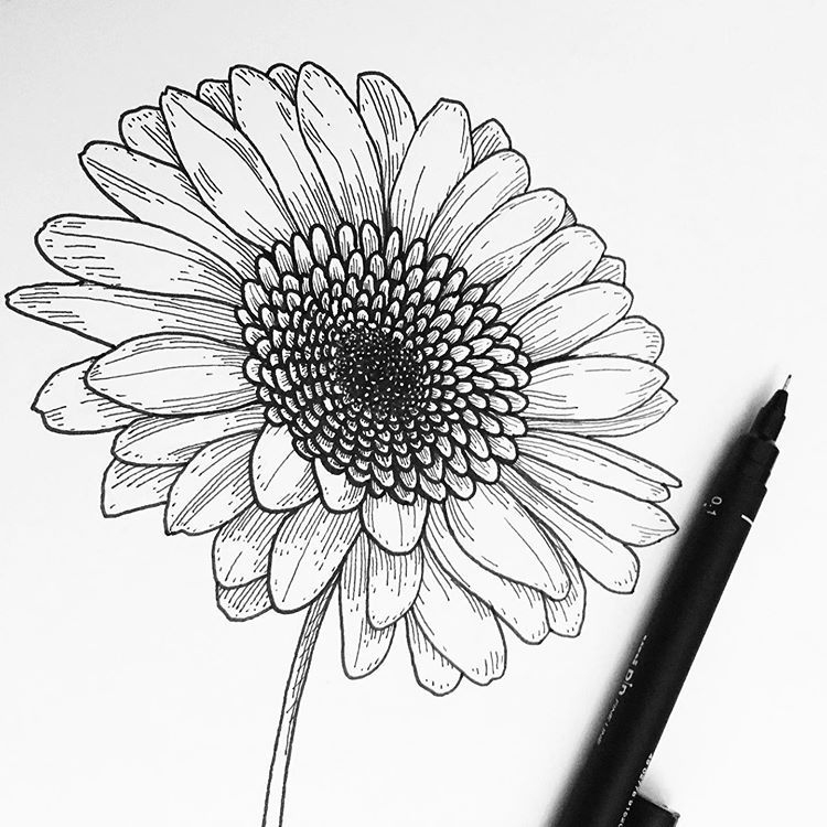 Pin On Coloriages