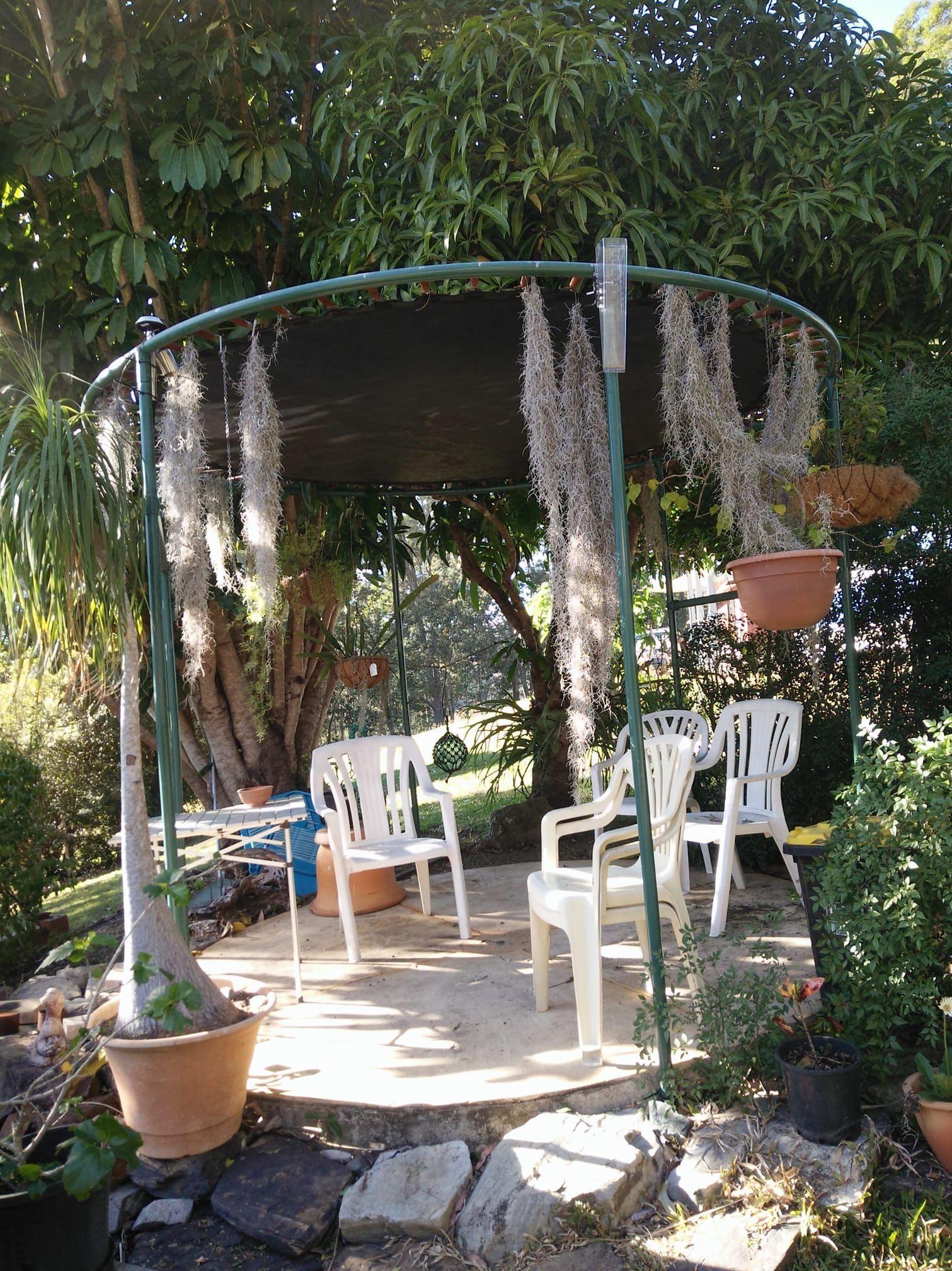 Upcycled Trampoline Gazebo Diy Diy Gazebo Recycled Trampoline Garden Trampoline