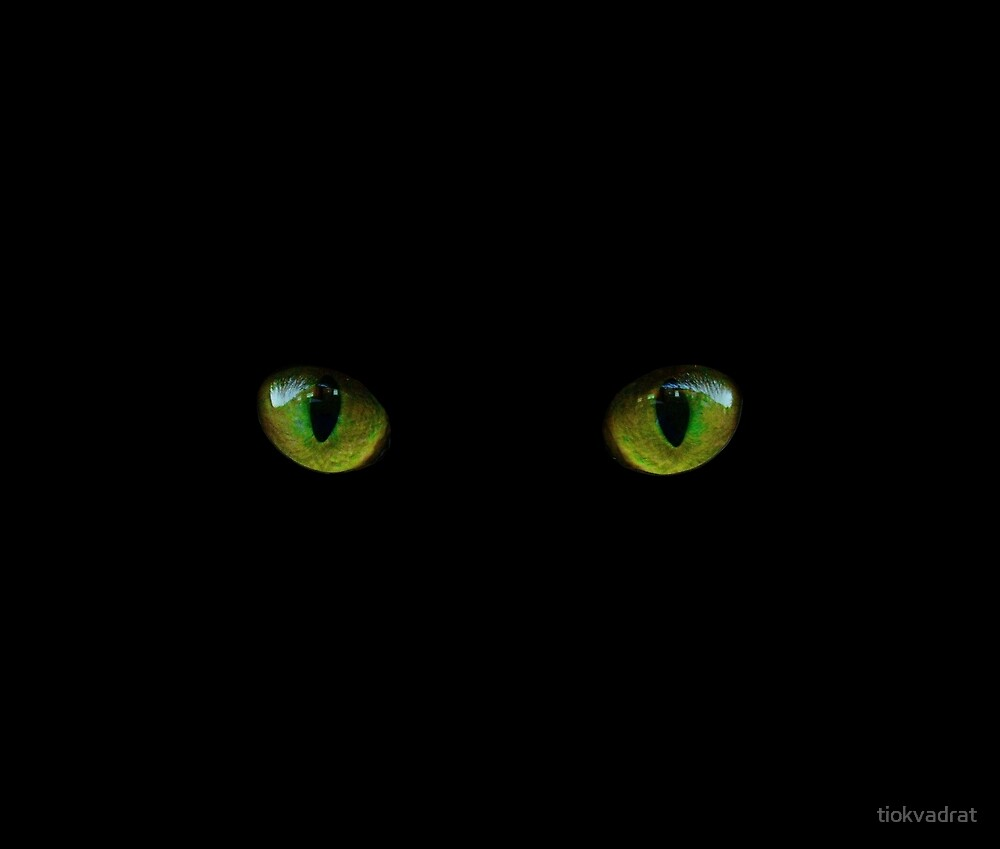 Big Bright Green Cat S Eyes Looking At You This Retro Style Cute Animal Design Will Appeal To Pet Owners And Animal Lovers A Cats Cat Lovers Animal Design