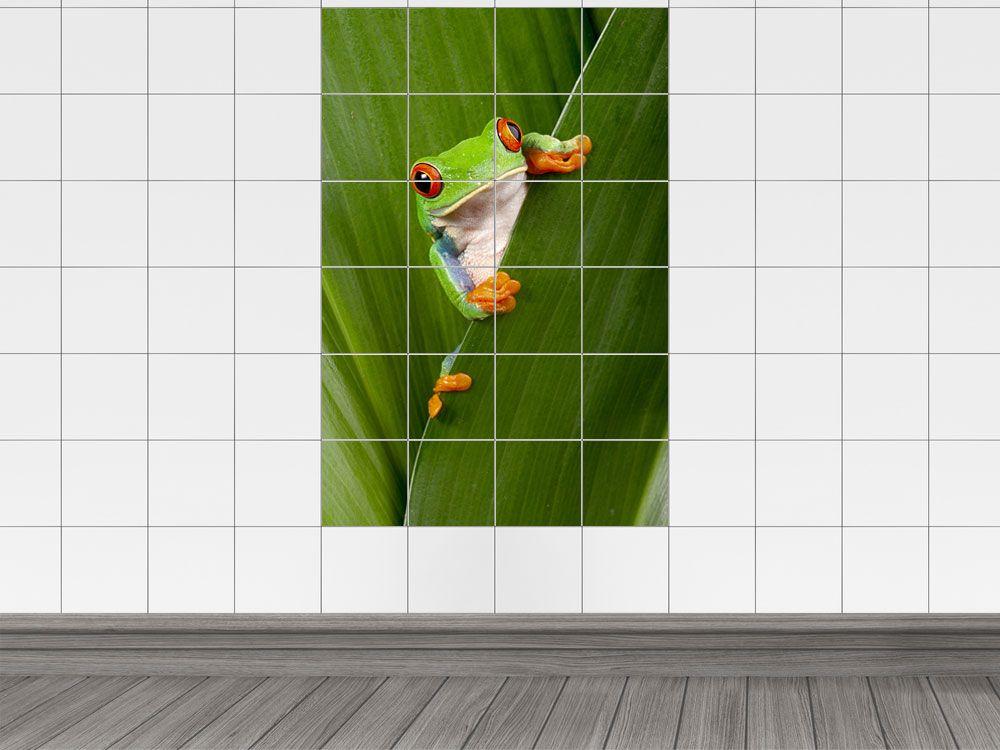 Fliesendekor Badezimmer ~ Die besten 25 fliesenaufkleber frosch ideen auf pinterest