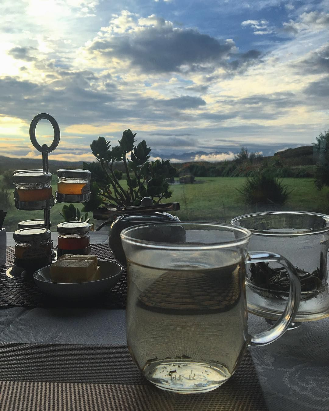 Morning tea with a view.