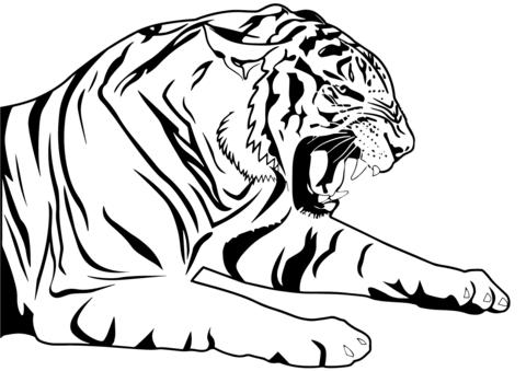 Tiger Coloring Page Malvorlagen Malvorlagen Zum Ausdrucken Malvorlagen Tiere