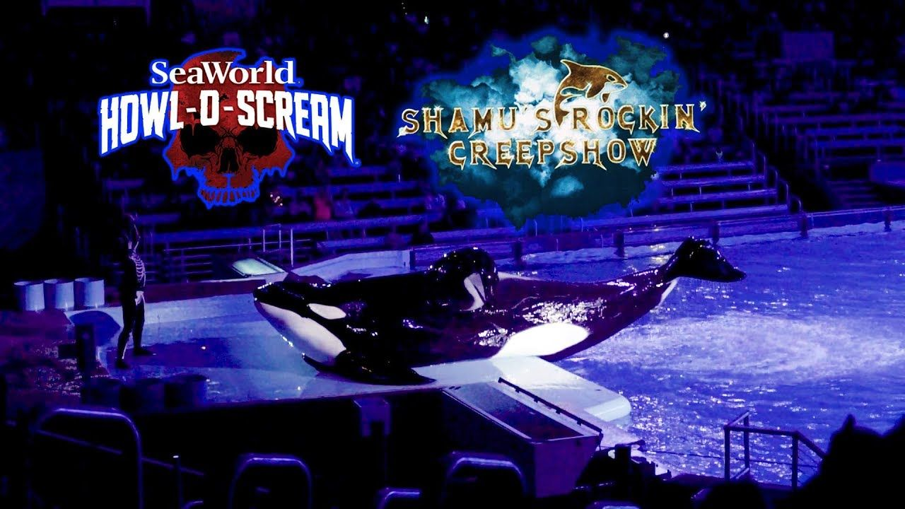 2018 Howl O Scream Shamu S Rockin Creepshow 10 06 2018 Complete Show Hd Seaworld San Antonio Creepshow Sea World