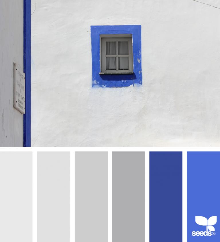 Color View Design Seeds Color Palette Design Seeds Seeds Color Palette