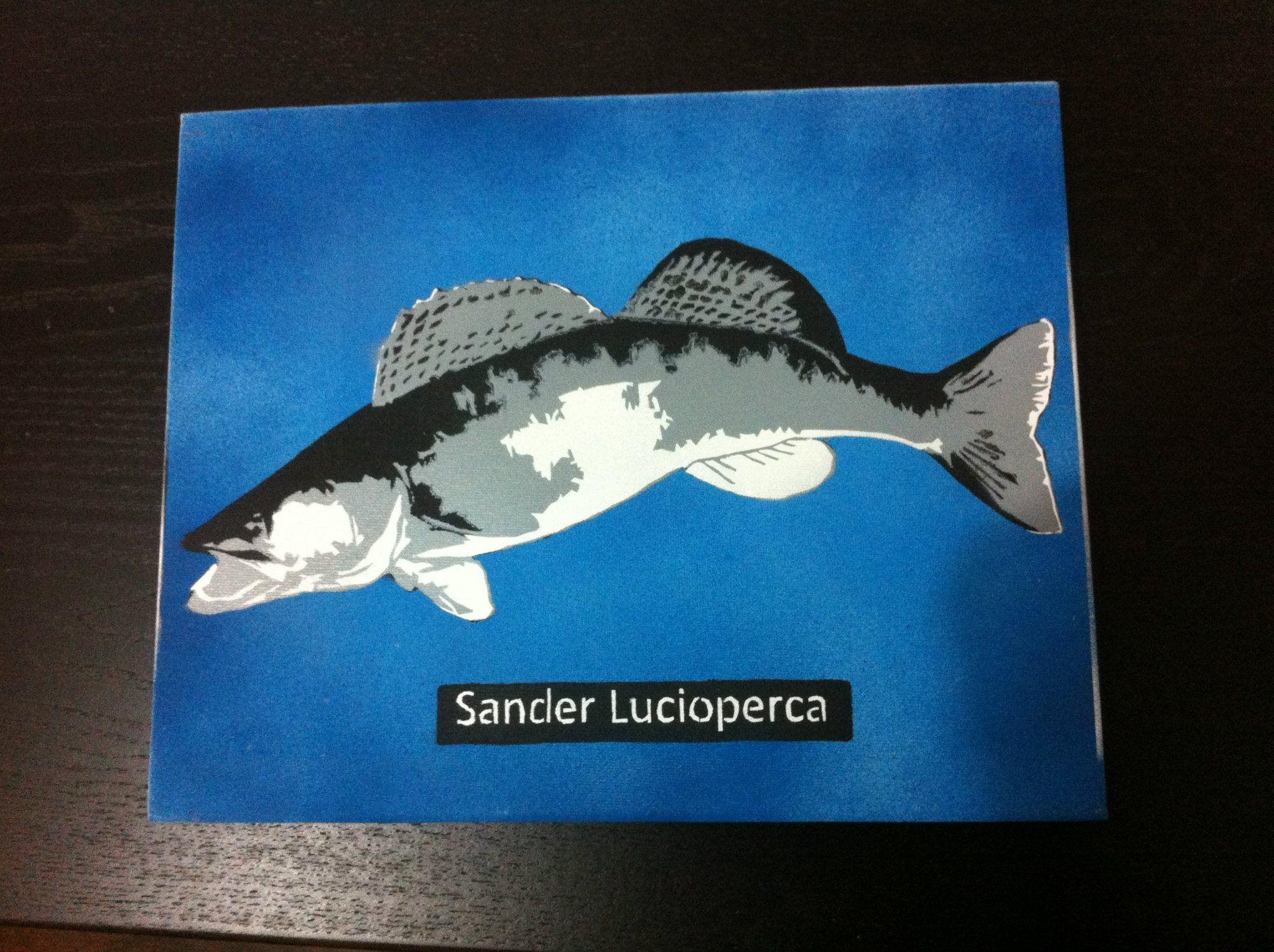 Sander Lucioperca Stencil