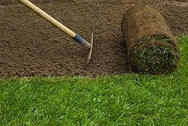 Disqus Profile of Everest Landscape - Details of Lawn maintenance services