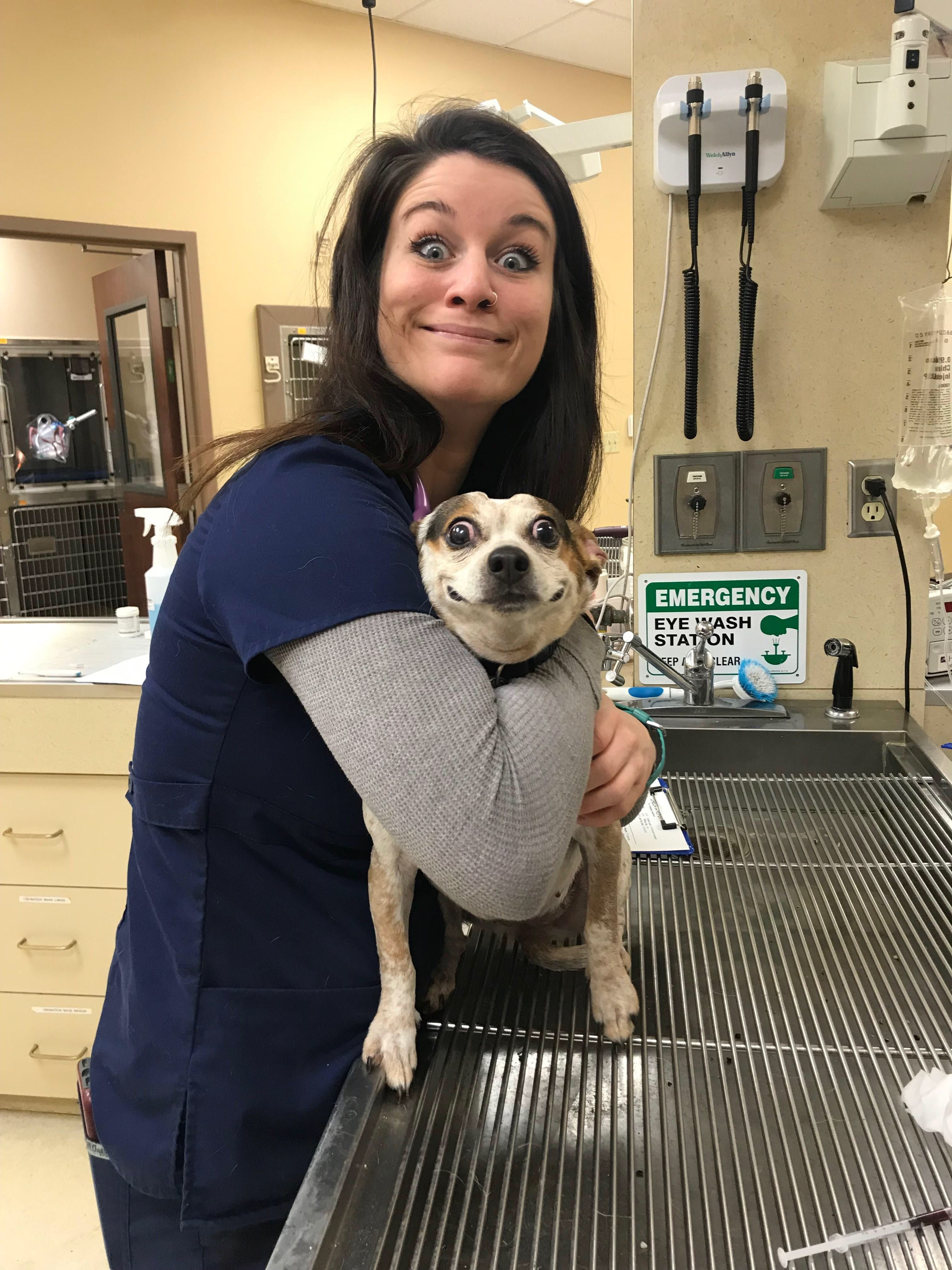 Shocked Pupper Is So Shocked Ft My Equally Shocked Coworker