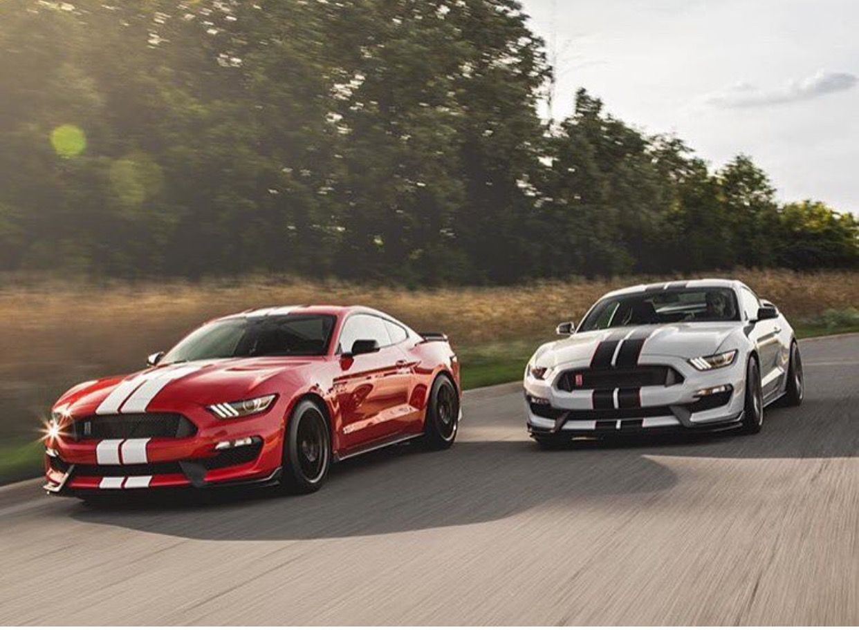 Pin by Sagers Sol rs & Miniatures on Mustang GT 350