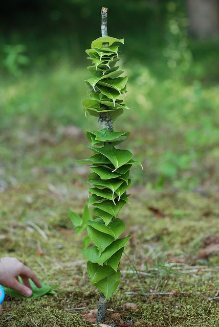 More Land Art by @springtreeroad