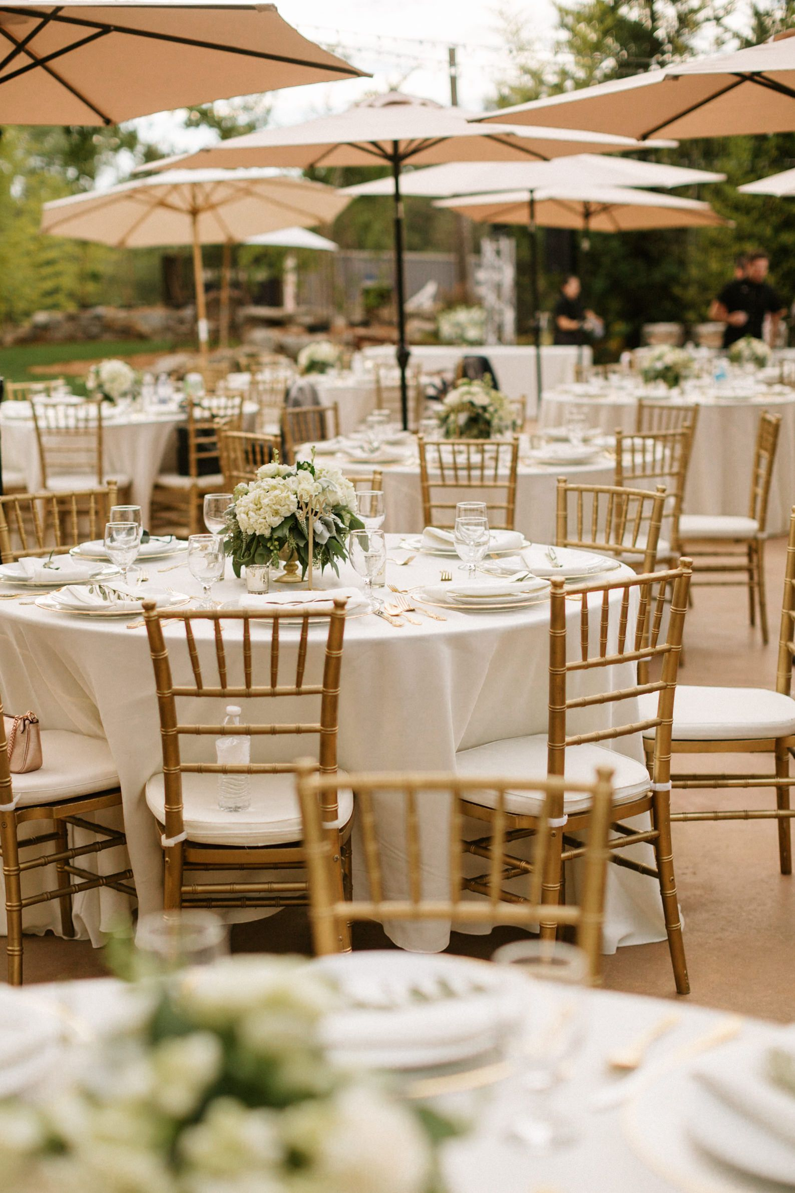 Pin by Events & Affairs on Gold Hill Gardens, Newcastle | Pinterest ...