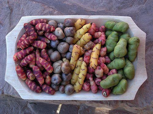 Batatas Andinas