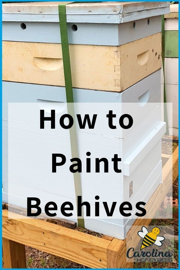 How To Paint Beehives  Quick Easy Tips is part of Painted bee hives, Bee hive plans, Bee keeping, Bee hive, Backyard bee, Bee hives boxes - Learn how to paint beehives properly  Answers to the questions What kind of paint shoud you use  What color should your beehive be  Which parts to paint