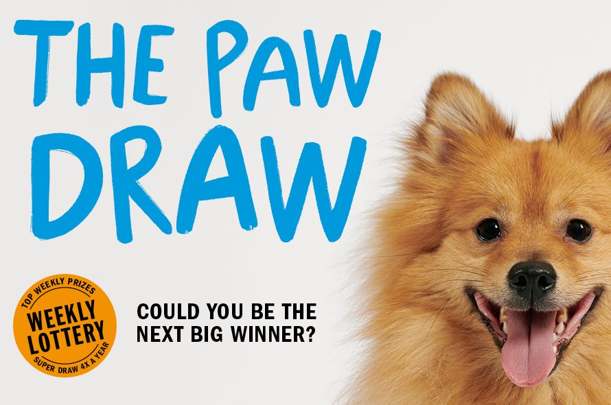 Paw Draw Weekly Lottery Battersea Dogs Cats Home Paw Drawing Lottery Battersea Dogs