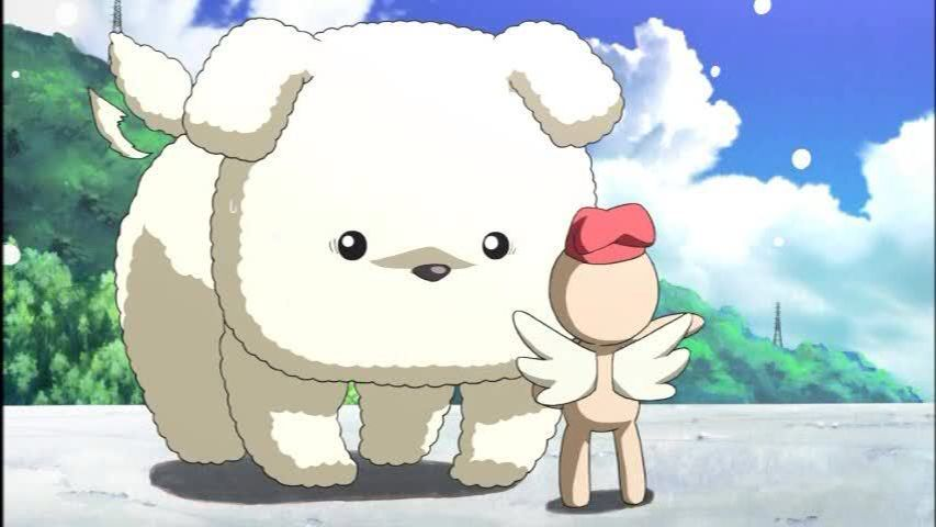 Air, potato the dog, google search | Kawaii animals, Anime, Kawaii