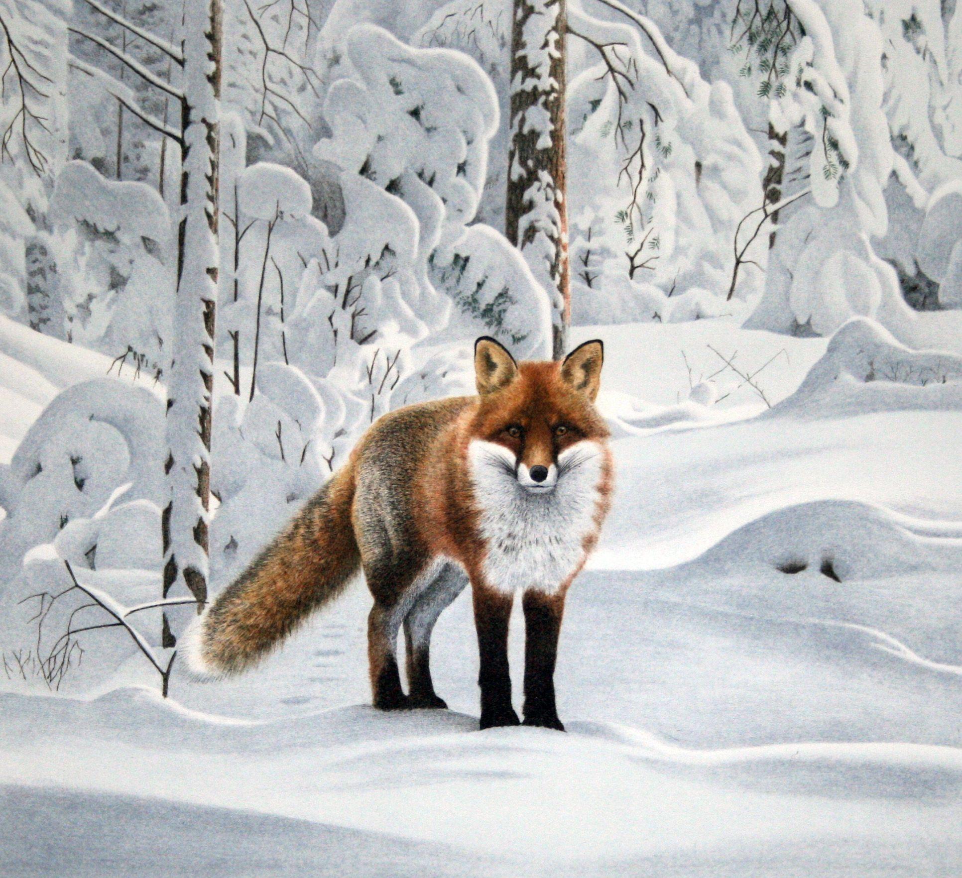 Staffan Ullstrom Fox Art Animal Art Scandinavian Art