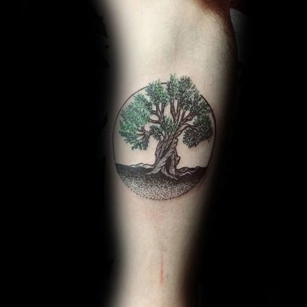 30 Olive Tree Tattoo Designs For Men Olea Europaea Ink Ideas Olive Tree Tattoos Tree Tattoo Men Tree Tattoo Arm