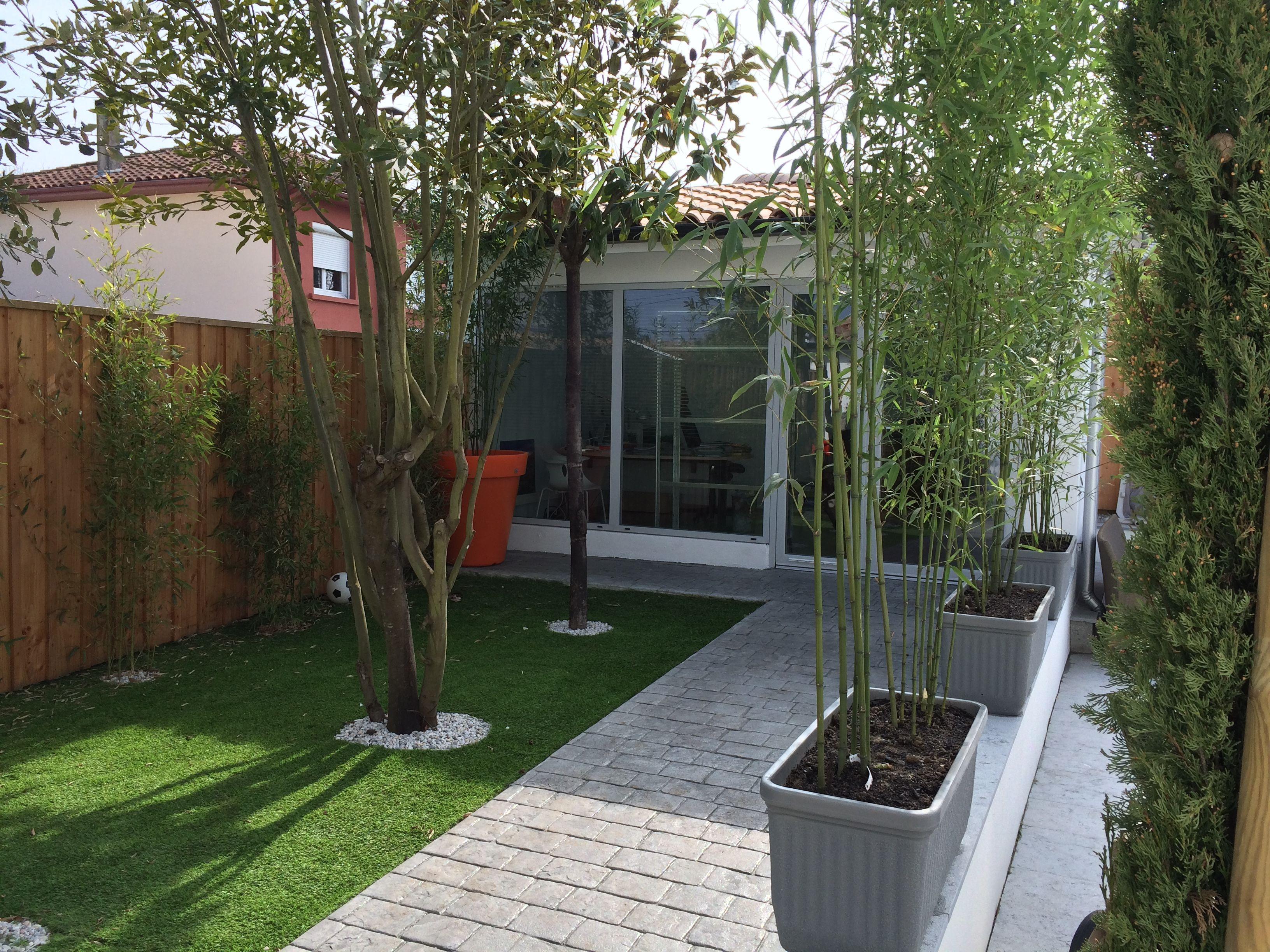 Creer Un Jardin Sans Entretien Devant Votre Bureau Petitjardin Jardin Jardindeville Gazon Gazonsynthetique Bambou En Pot Petits Jardins Amenagement Jardin