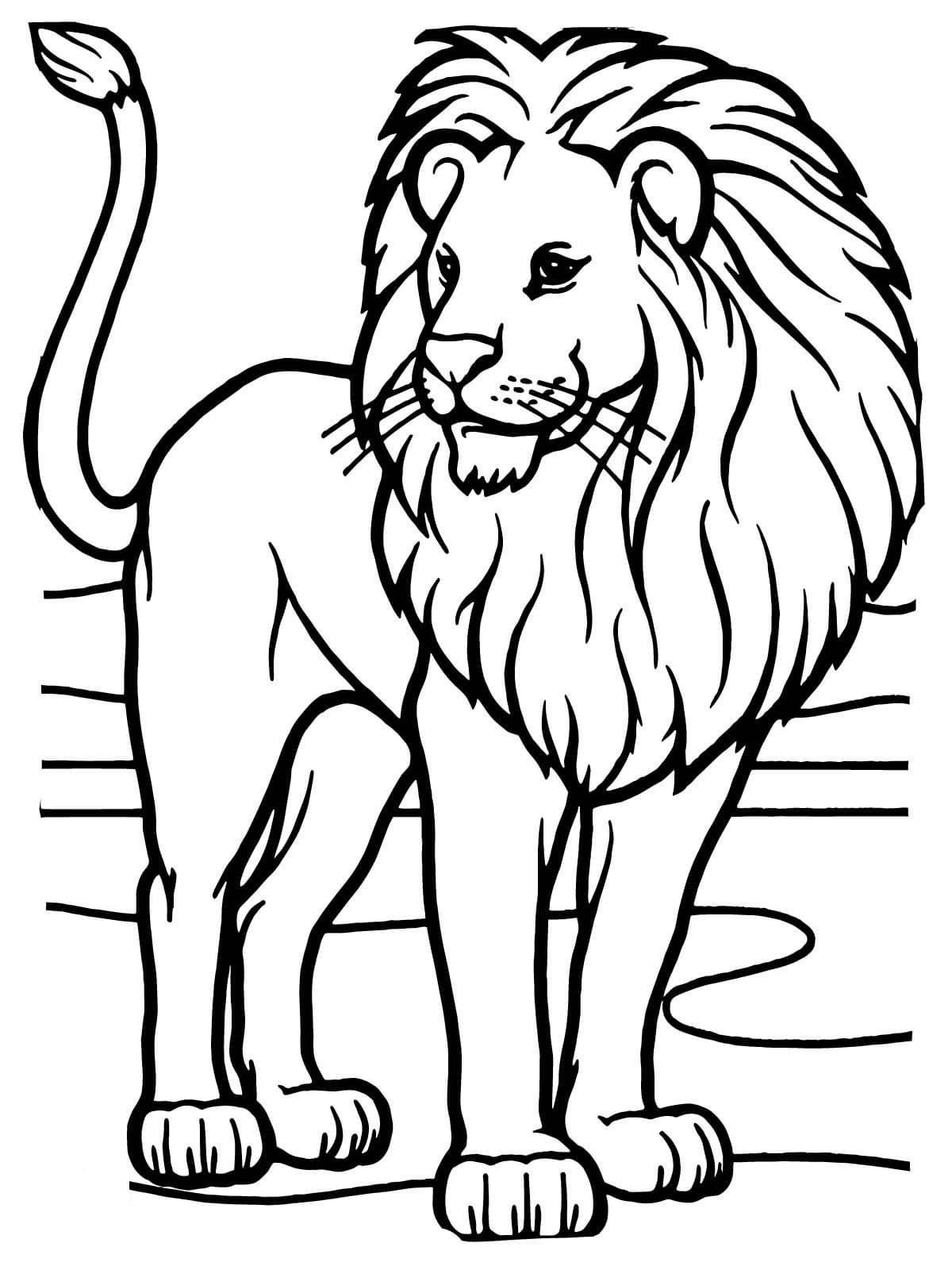 It is a photo of Intrepid Printable Lion Coloring Pages