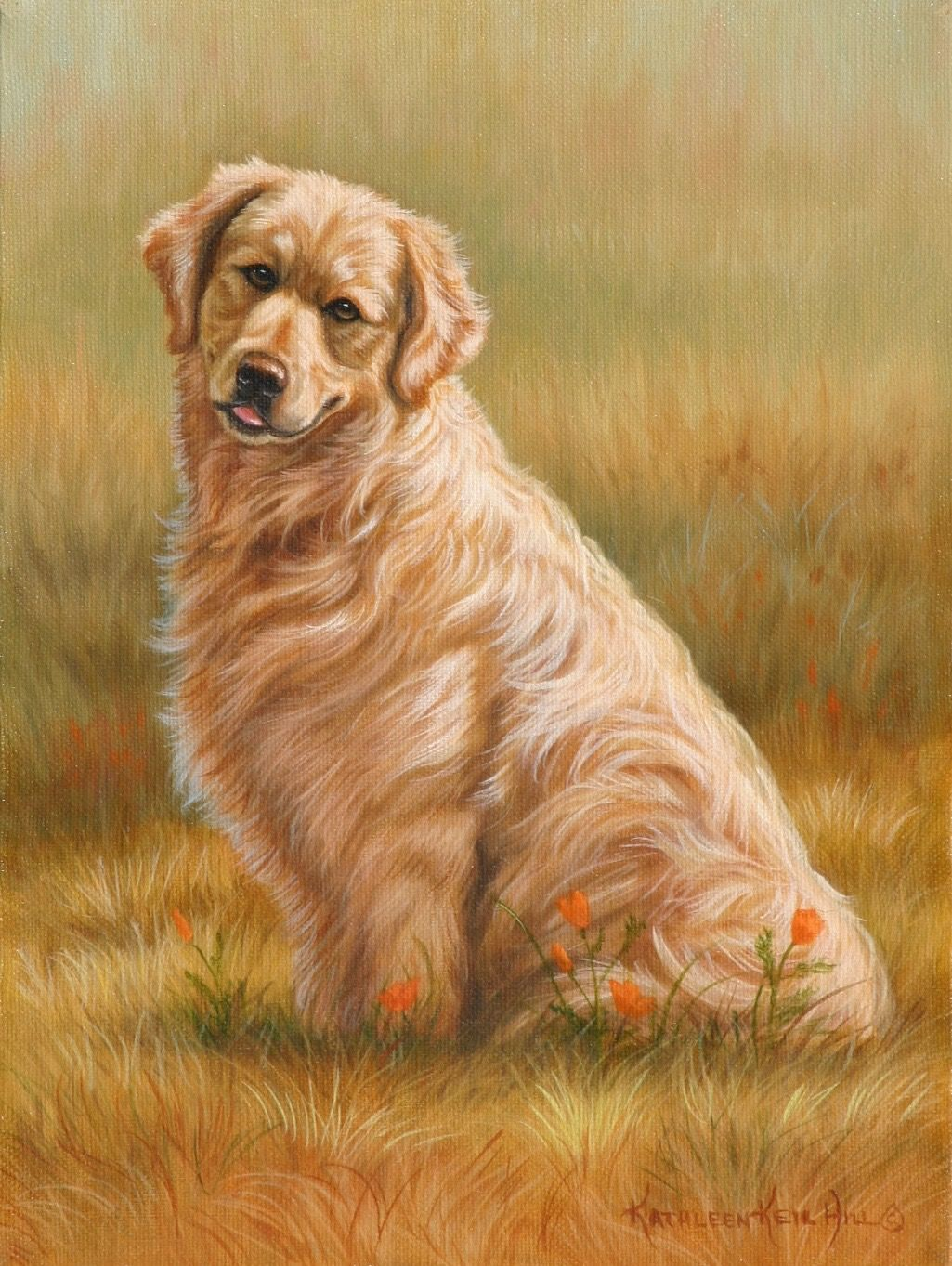 A Golden Glow 9 X 12 Oil On Canvas Of A Golden Retriever Sitting