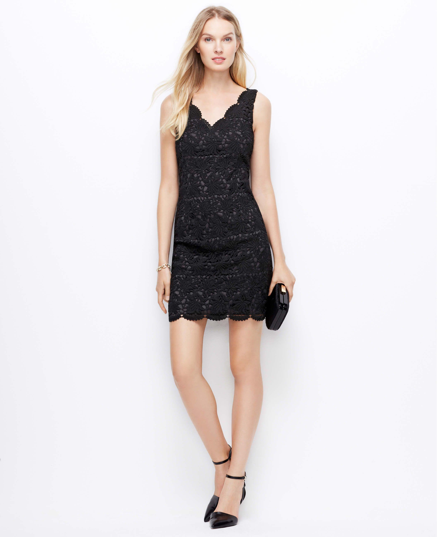 Petite Scalloped Lace Dress | Ann Taylor | Clothes | Pinterest ...
