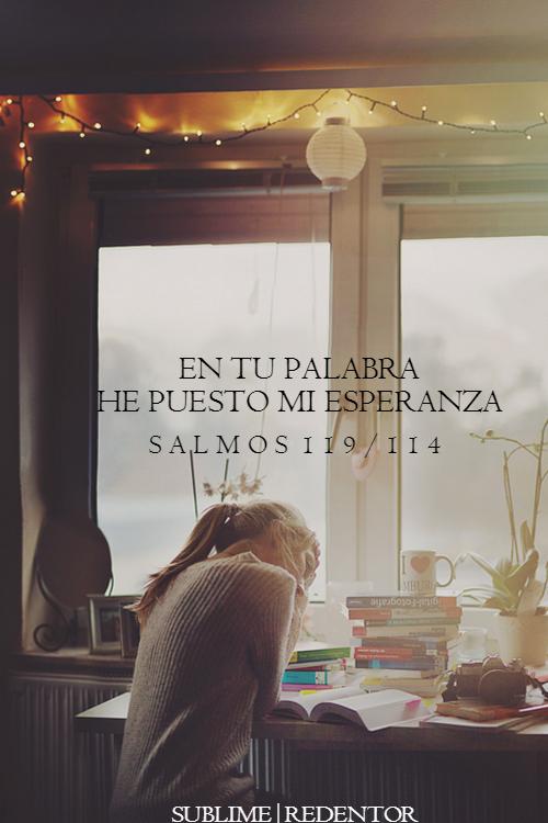 Salmos 119:114 Mi escondedero y mi escudo eres tú; En tu palabra he esperado.