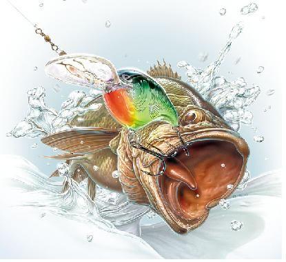 Bass Fishing Wallpaper With Images Fish Wallpaper Fish Art Fish