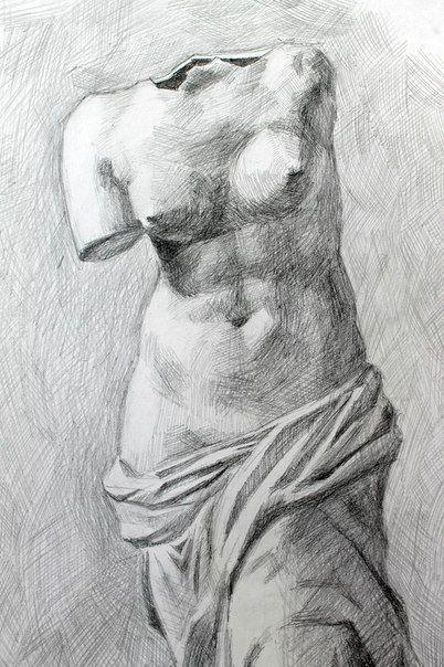 скелет человека рисунок карандашом - Поиск в Google