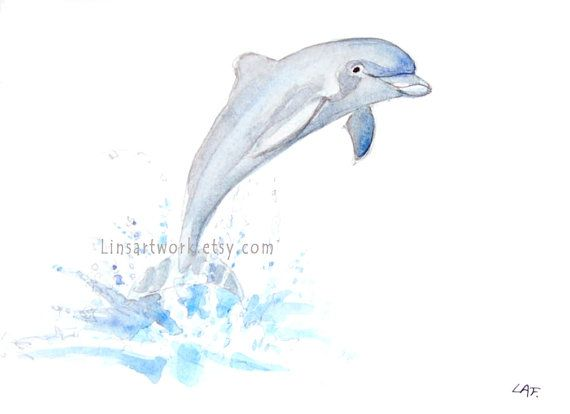 Dolphin art, dolphin prints, watercolor prints.Original watercolor, Limited Edition Print 5″ x 7″ –  Dolphin jumping . tropical mammals.