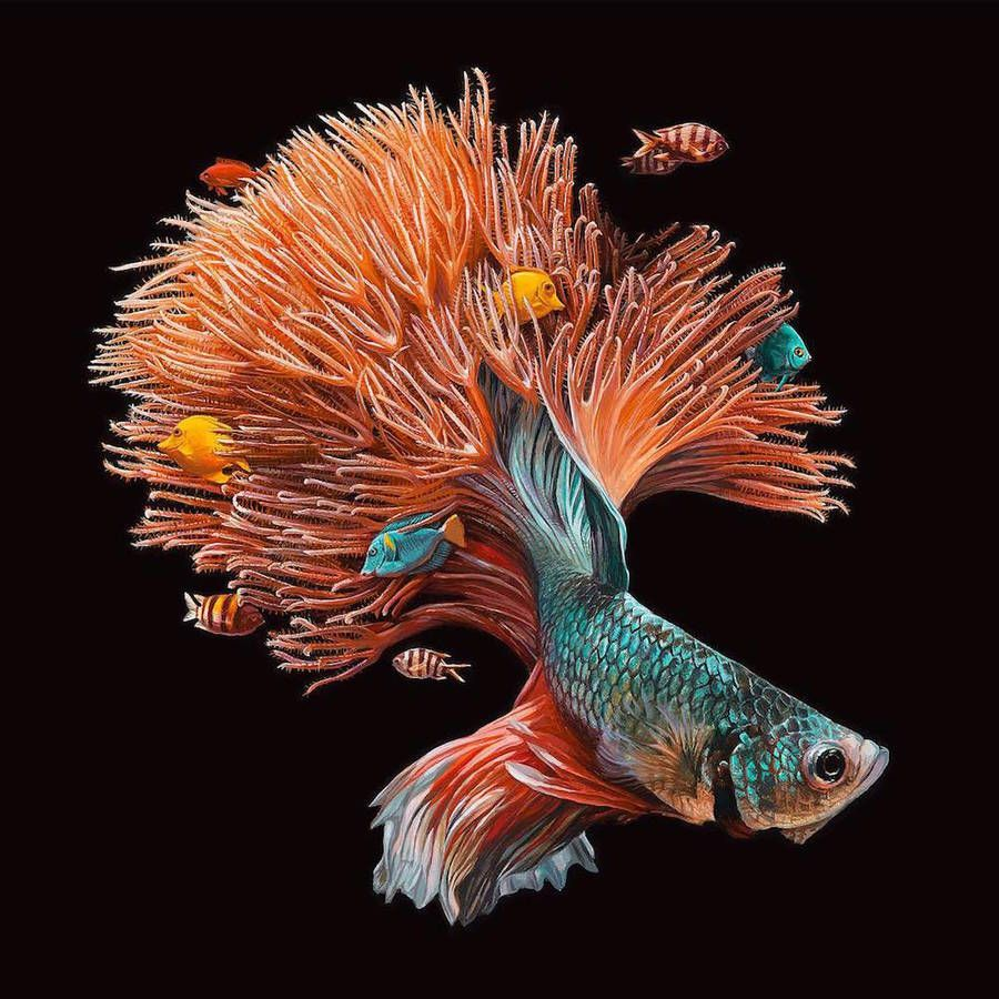 Hyperrealistic Paintings of Fishes and their Environment | Pinterest