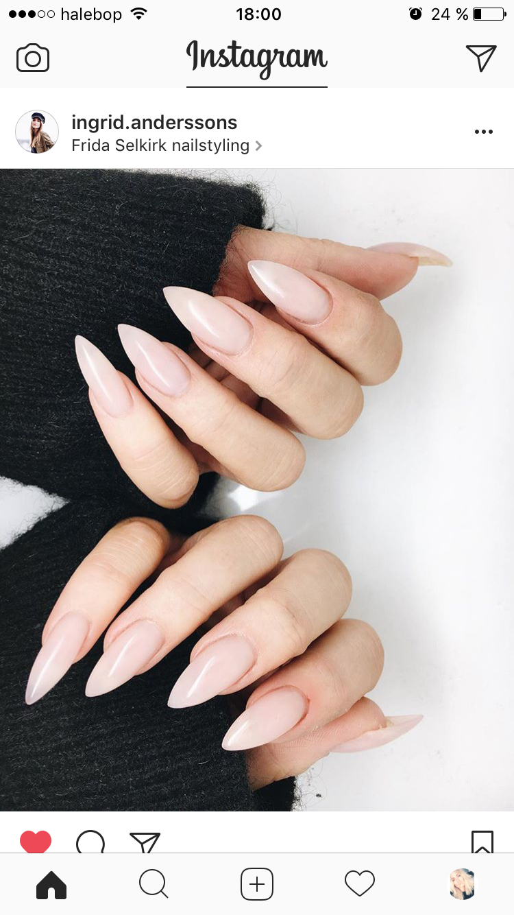 Mariaconaty c l a w s in pinterest nails nail art and