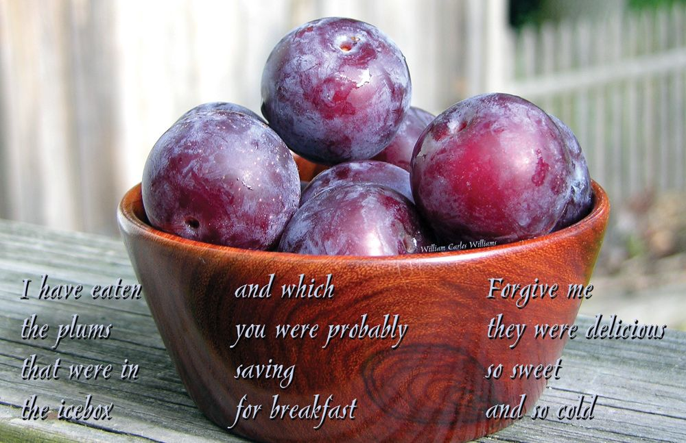 THIS IS JUST TO SAY by William Carlos Williams - I have eaten the ...