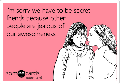 I M Sorry We Have To Be Secret Friends Because Other People Are Jealous Of Our Awesomeness Wife Humor Best Friend Meme Funny Quotes