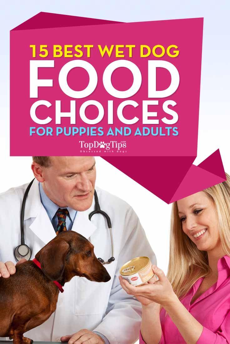 Top 20 Best Wet Dog Food Brands For Puppies Wet Dog Food Dog Food Recipes Puppy Food