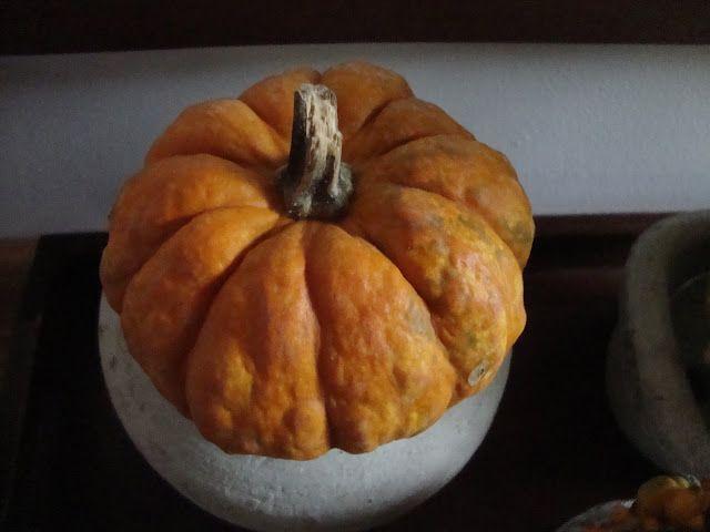 Decorare con le zucche -  http://lefotodiluisella.blogspot.it/