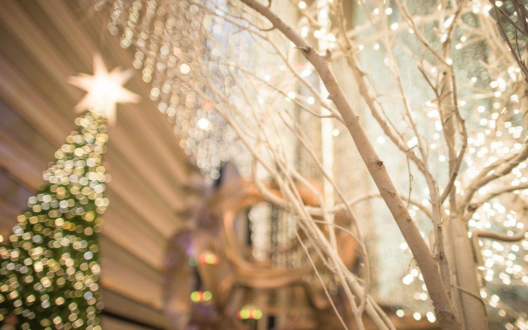 Christmas Tree San Francisco City Lights Bokeh HD Wallpaper