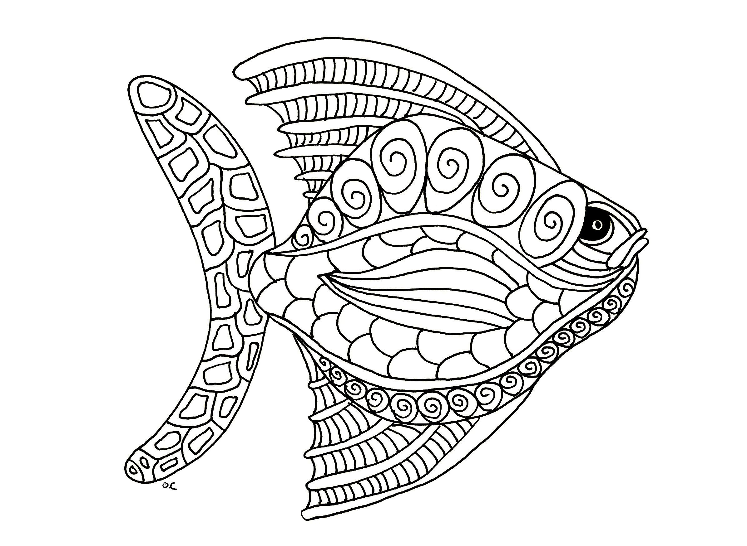 Galerie de coloriages gratuits coloriage poisson zentangle etape 1 par olivier poisson style - Dessin poisson stylise ...