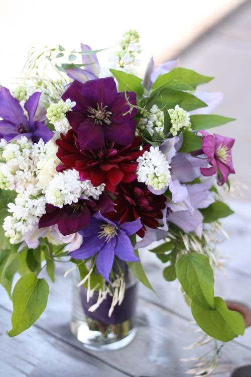 Clematis Varieties By Florabundance Purple Wedding Flowers Beautiful Flowers Wedding Flowers