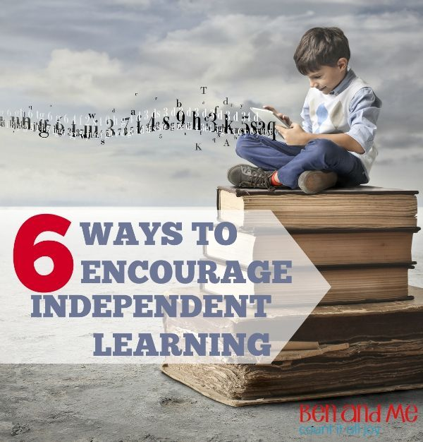 Delight-directed Learning: Encouraging Independent ...