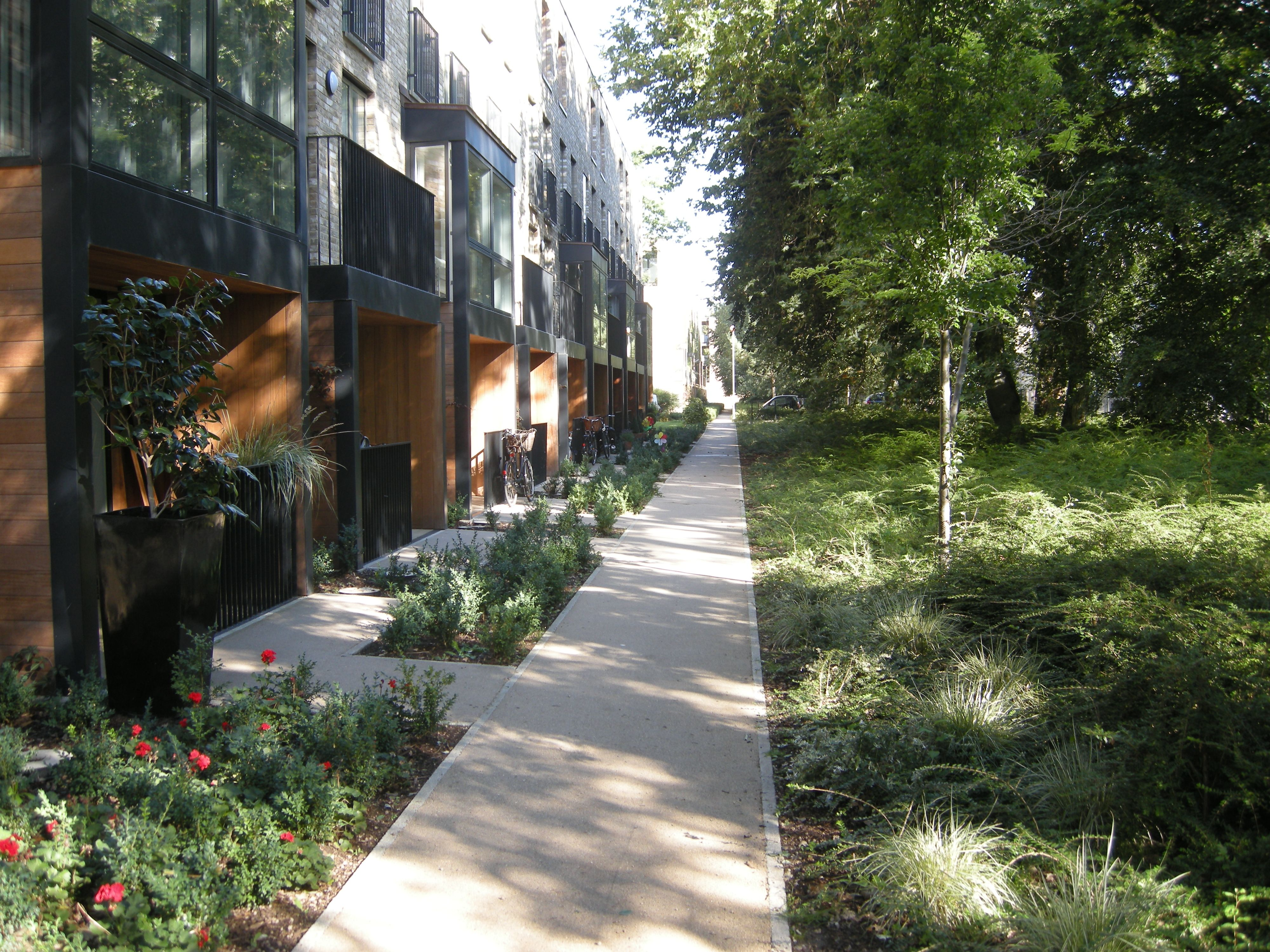 Accordia cambridge residential development cambridge for Residential landscape architecture