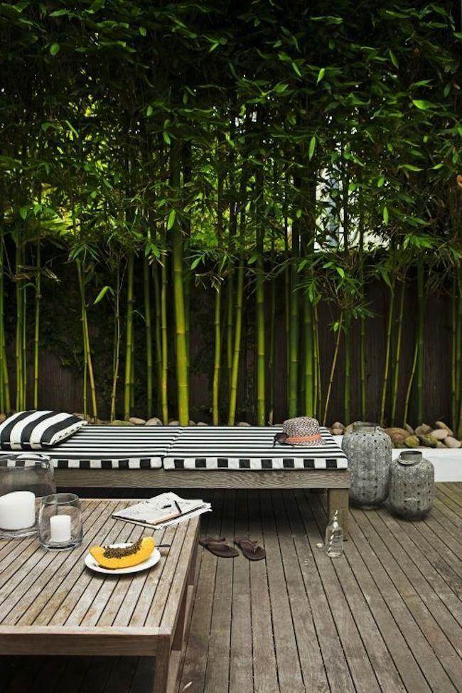 Terrasse bois et bambous