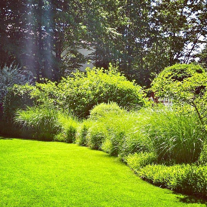 Gräsergarten Bilder wohnideen interior design einrichtungsideen bilder