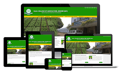 Website Design Development In 2020 Best Seo Services Website Development Company Website Development