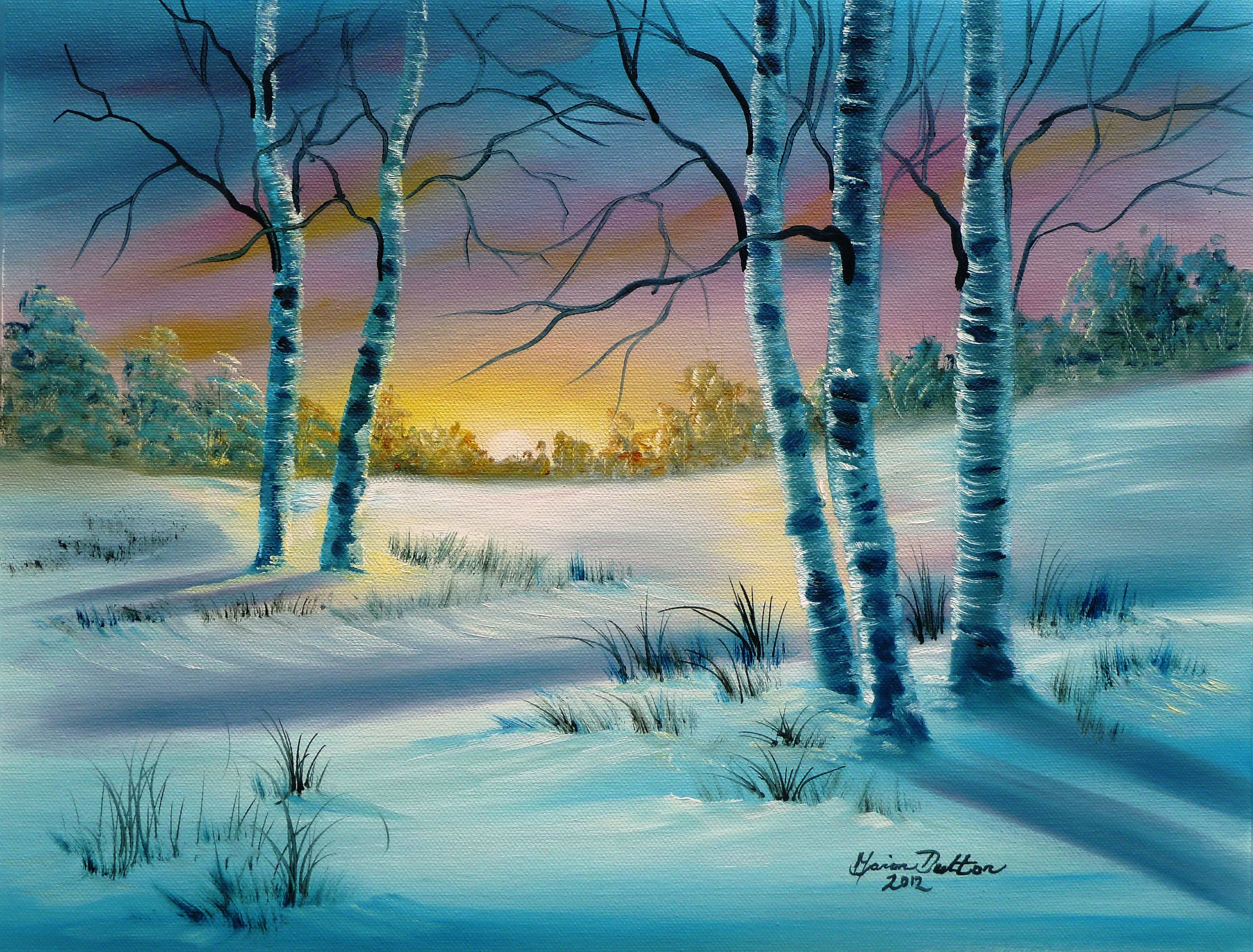 Pastel sunset on the snow with pretty white Birch Trees. Marion ...