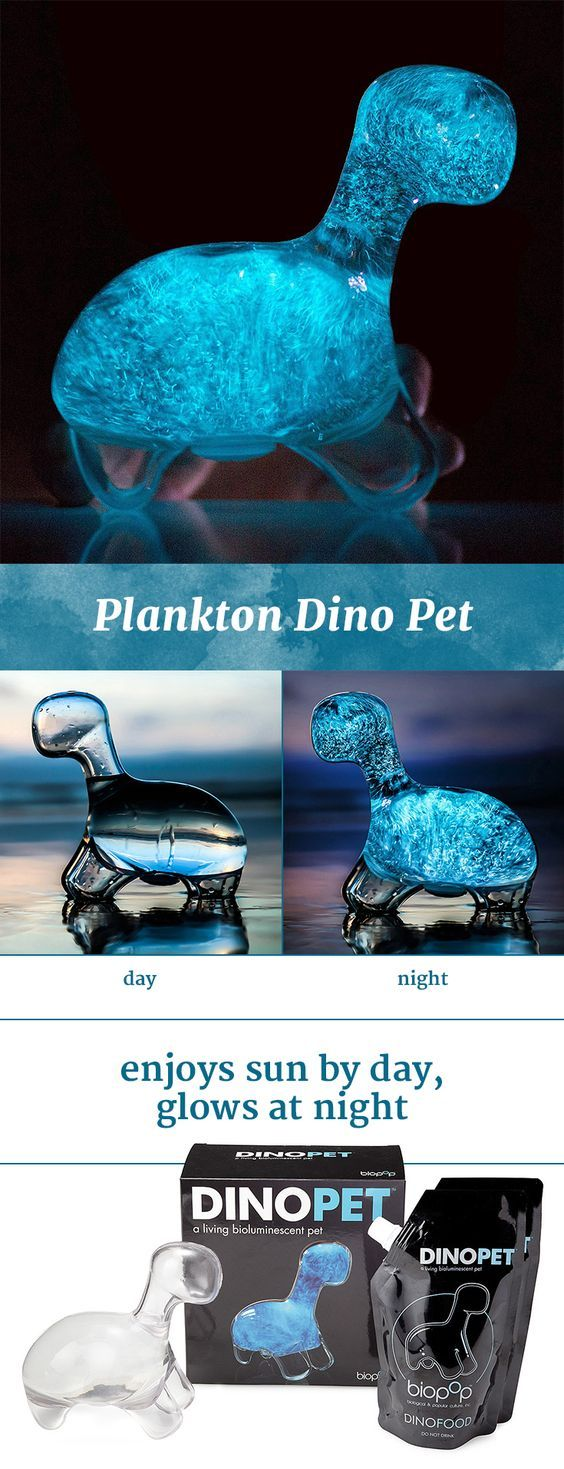 bioluminescent dino pet glowing
