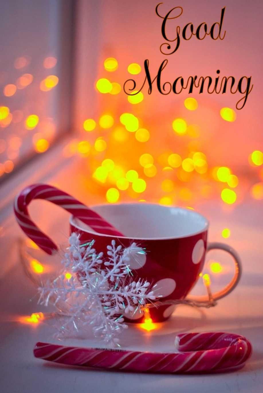 Guten Morgen #winterwallpaper