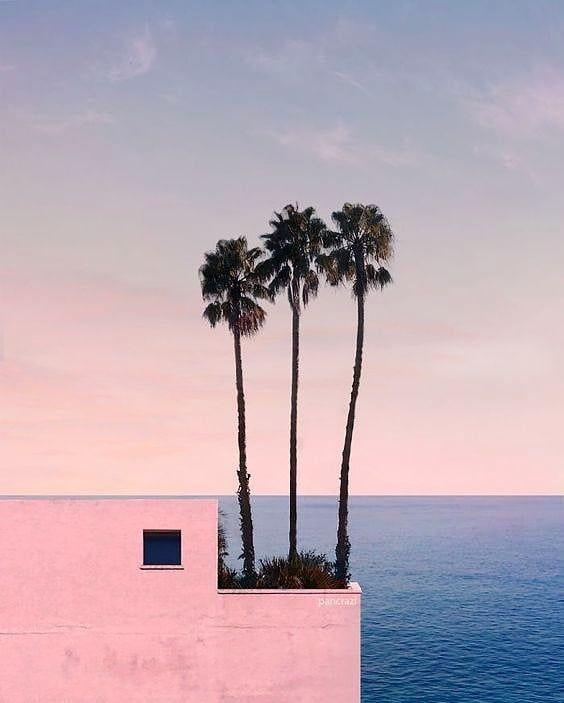 Cozy Sea Views Image By Pancrazi Chicandbasic Lowxury Inspiration Palmtrees Colour Palm Tree Photography Landscape Wallpaper Tree Photography