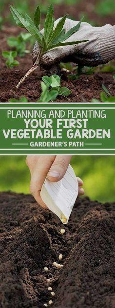 Garden Vegetablegar Central Oregon Gardening Backyard Vegetable Gardens Vegetable Garden Vegetable Garden Planner